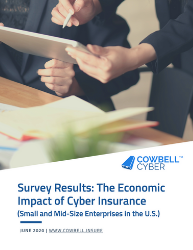 Cyber Insurance survey results